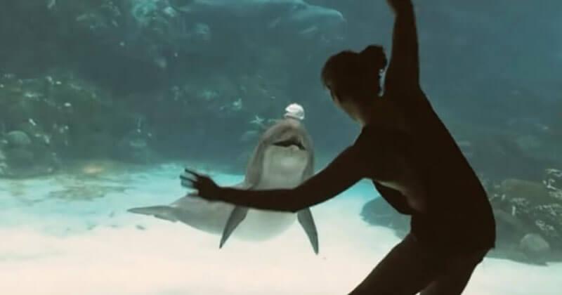 Девушке удалось рассмешить дельфина. Он действительно смеялся!