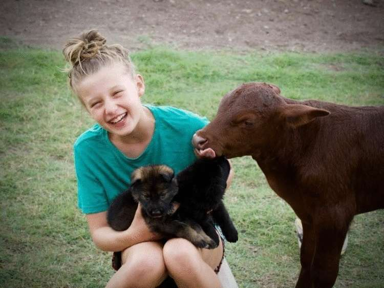 Как теленок стал настоящей овчаркой